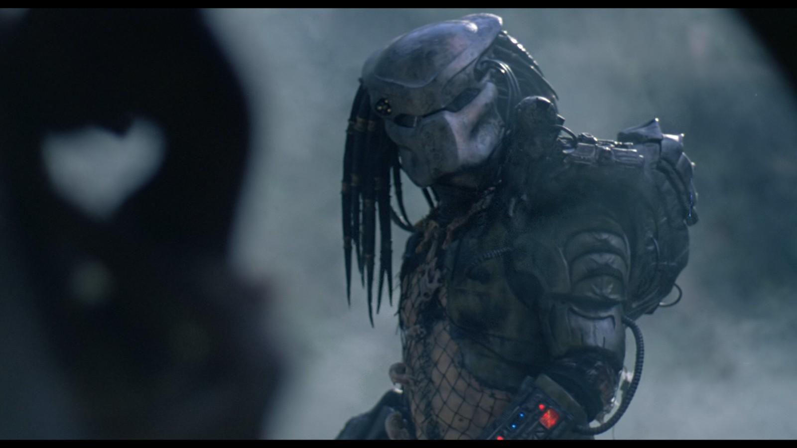 Predator13.jpg