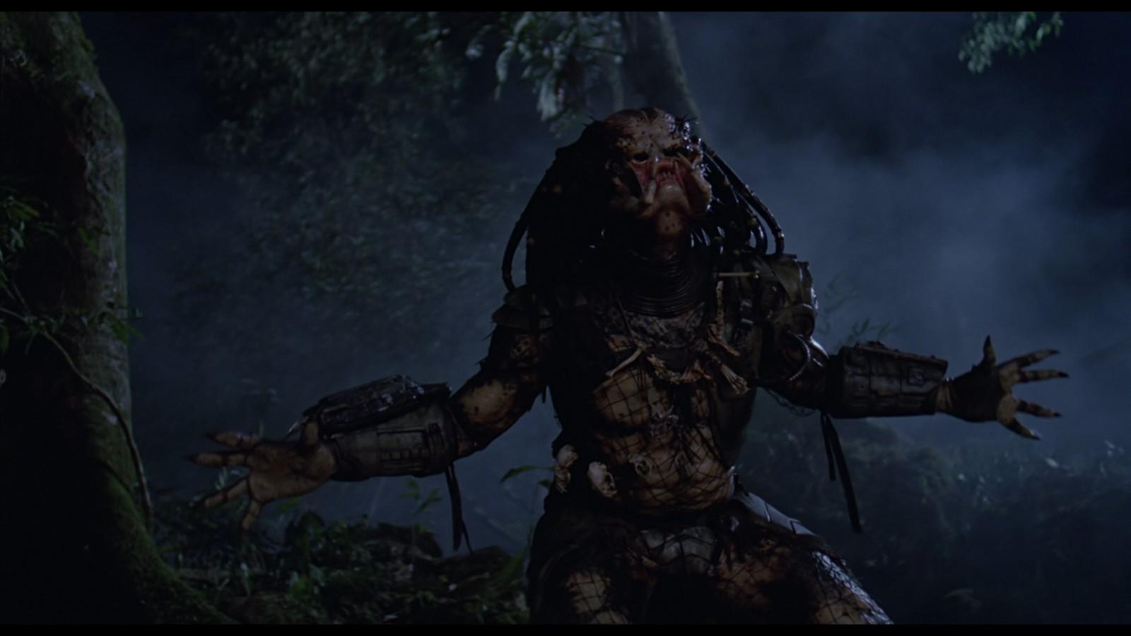 Predator14.jpg